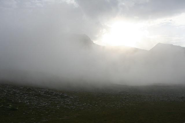 Misty Bernese Oberland