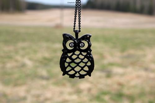 Owl:3
