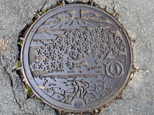 Miya Gifu, manhole cover (岐阜県宮村のマンホール)