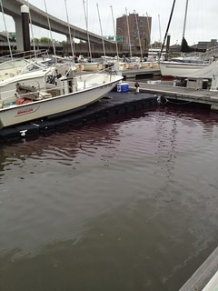 The Coast Guard is responding to reports of pollution from an unknown source causing pools of thick, purple diesel-type product and sheens in the water in Ashley Marina and Charleston City Marina Saturday, April 19, 2014. Coast Guard pollution responders are currently on scene attempting to determine the amount and source of the pollution. (U.S. Coast Guard photo)