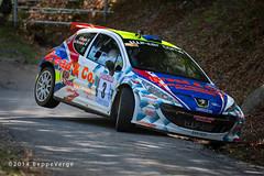 Rally di Varallo e Borgosesia - 2014
