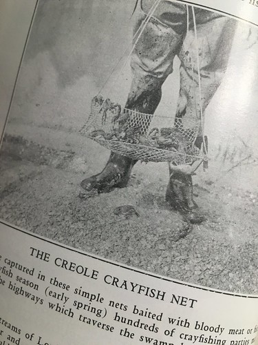 The Creole Crayfish Net