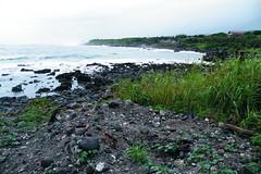 遭受開發商傾倒廢土的基翬海岸(照片提供:宋明燕)