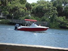Waves Boat - RU Reddy