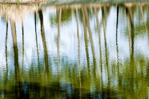 Silencio, Sombra, y Agua by @uroraboreal