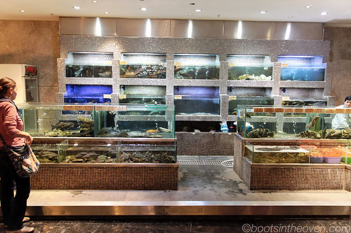 Fresh Seafood Tanks, Guangzhou Restaurant