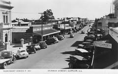 66 Murray Street