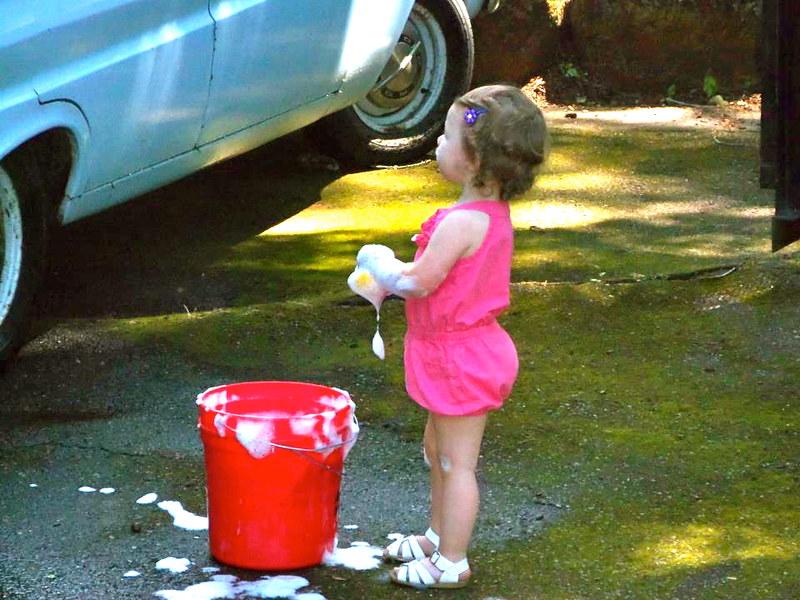 washing the falcon2