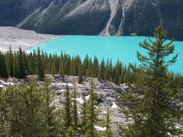 Lago Peyto, Parque Nacional Banff, Canadá