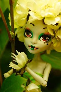 Blume de Fleur