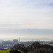 Midday Auckland Fog Panorama