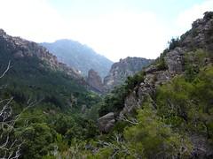 Remontée de la Frassiccia : au col du contournement du ressaut par la RG, vue vers l'aval et le canyon de Carciara