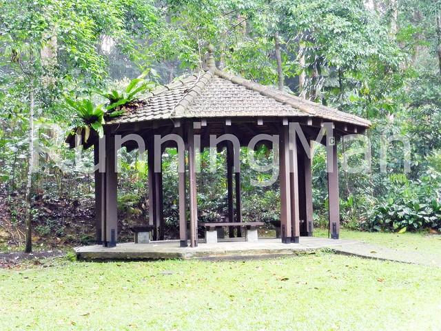 Bukit Batok Nature Park 01