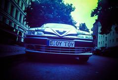 Boy Toy 207/366
