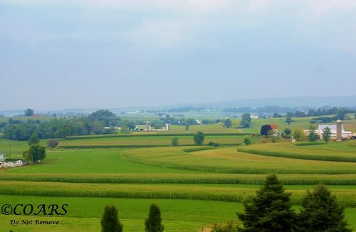 @Farmland 1
