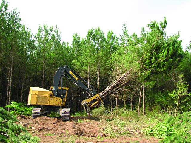 A high-productivity system to harvest Southern pine
