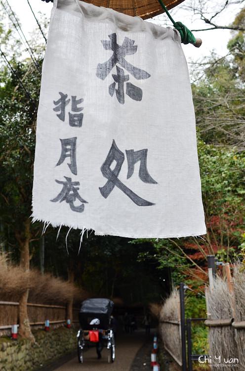 [日本。嵐山]竹林之道。療癒的寧靜夢境