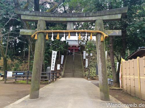 kawagoe (9 von 53)