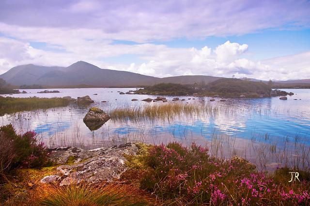 Rannoch Moor. Scotland