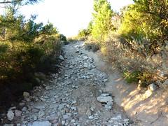 En Haut-Cavu, il y a la bonne et la mauvaise piste. La mauvaise piste, elle monte, ... mais c'est une mauvaise piste !