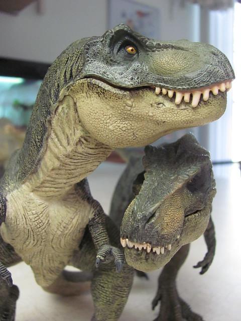 T-rex pair 02