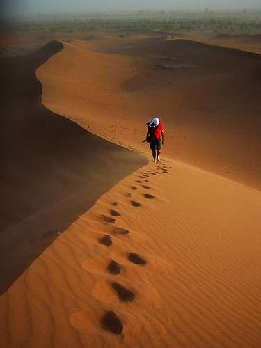 Feeling the freedom in the Sahara's dunes
