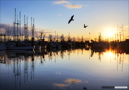 Steveston Harbour Sunset
