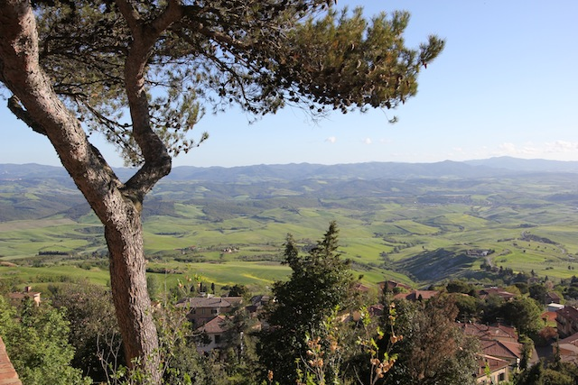 Volterra view1
