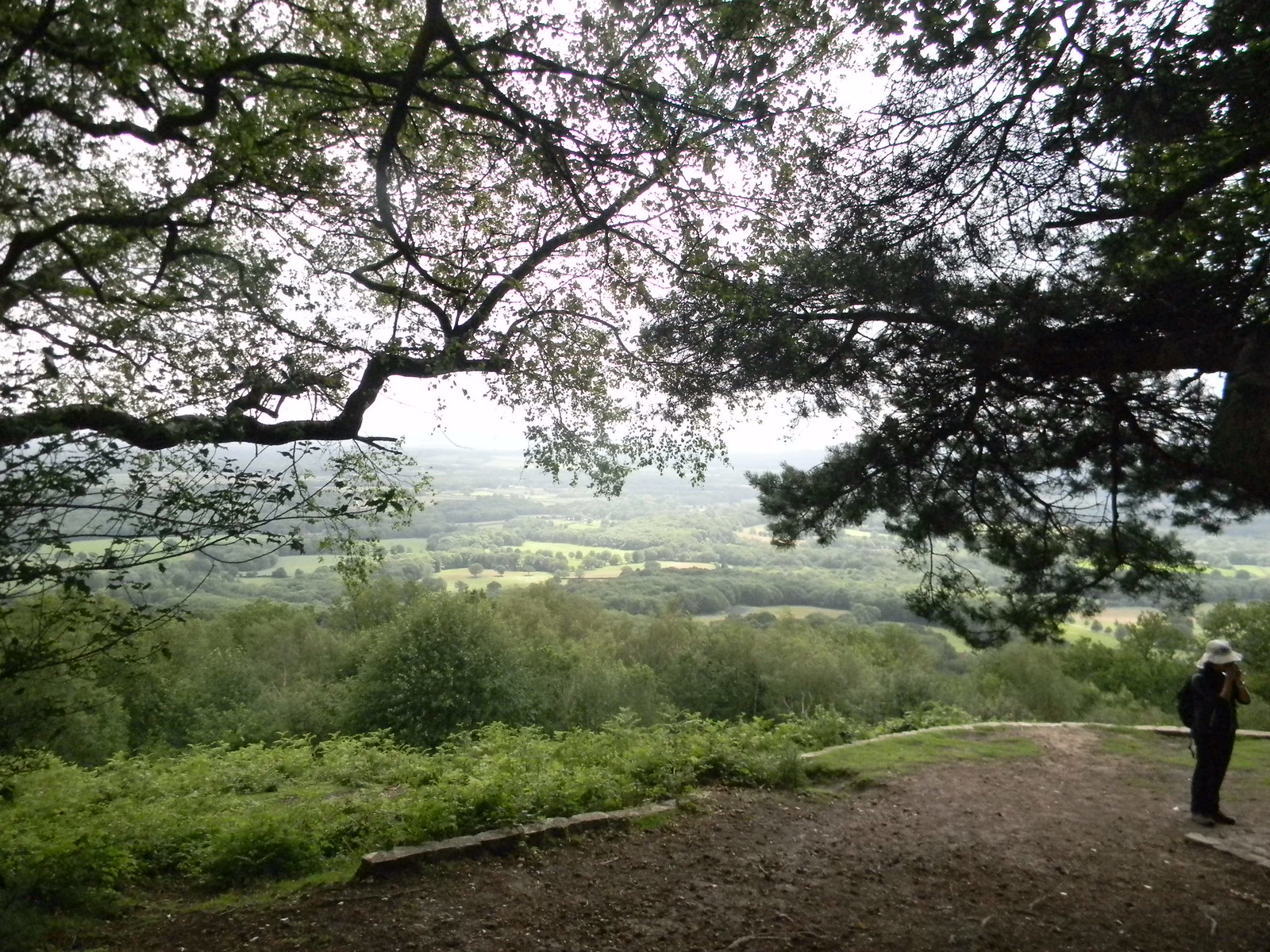 "View from ""Temple of the Four Winds"" Haslemere to Midhurst"