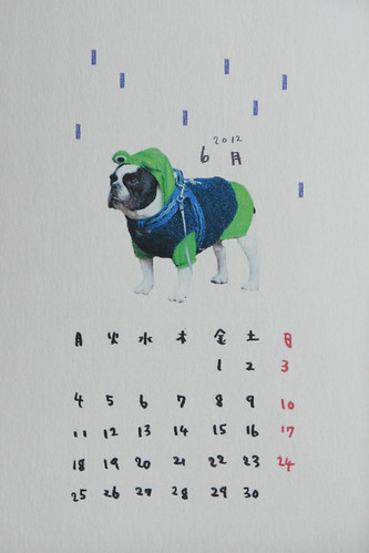 French Bulldog Chikuwa in frog raincoat ///// June calendar