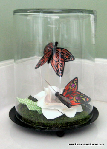 DIY Butterfly Jar