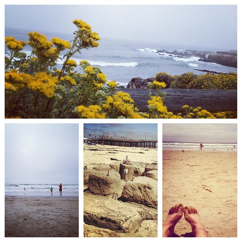 Central Coast California Beaches- Instagram Review