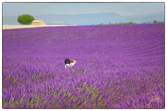 Photographing the Provence