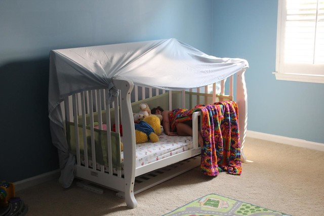 Crib Tent Or Toddler Bed
