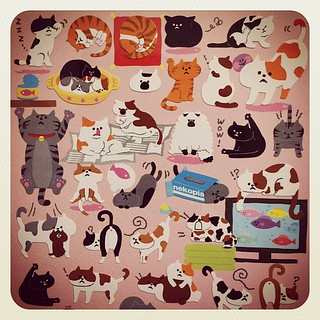(from Kamio Japan) #stickers
