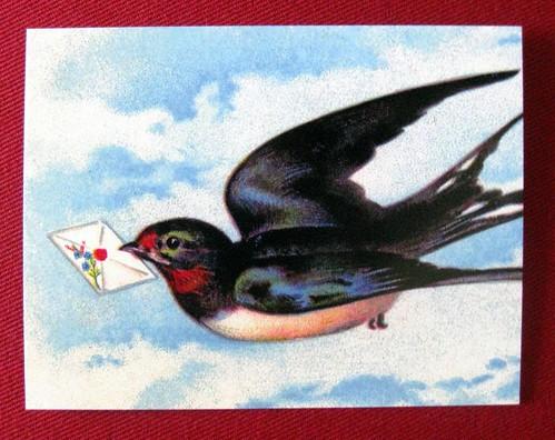Letterbird