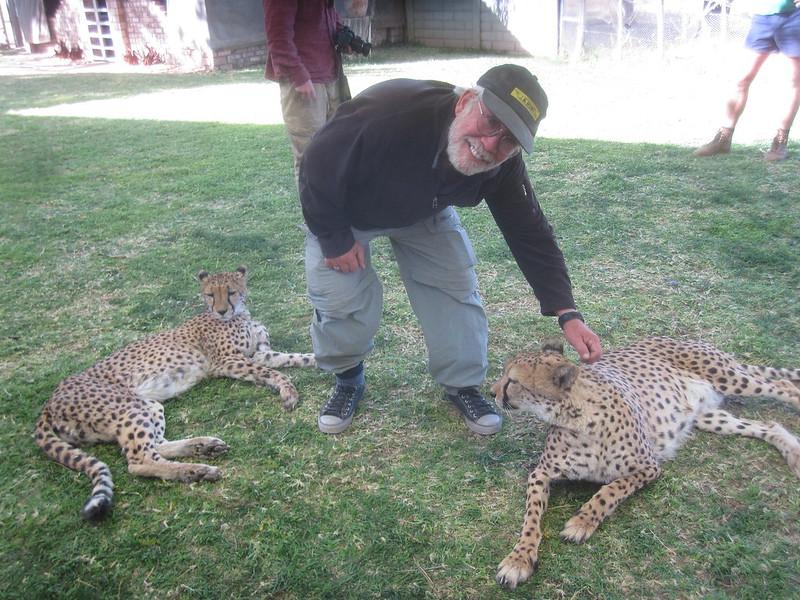 Namibia Africa Cheetah Park