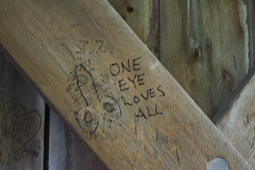 one eye loves all