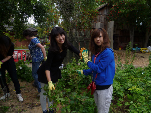 Community action day Windmill Hil