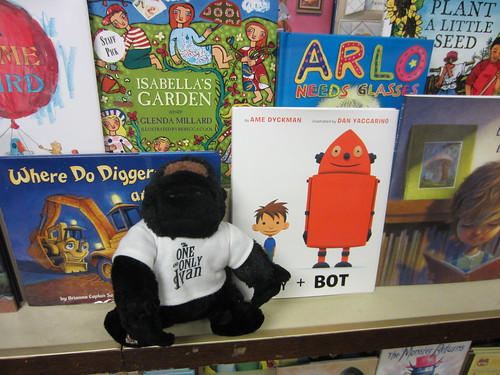 Ivan, Boy, and Bot hung out at Capitol Books