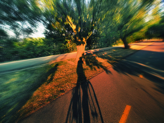 Sunset Ride on the Howard Temin Lakeshore Path