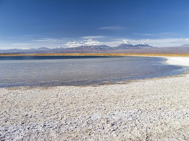 Laguna Piedra. Salar de Atacama. Reserva Nacional Los Flamencos. Chile