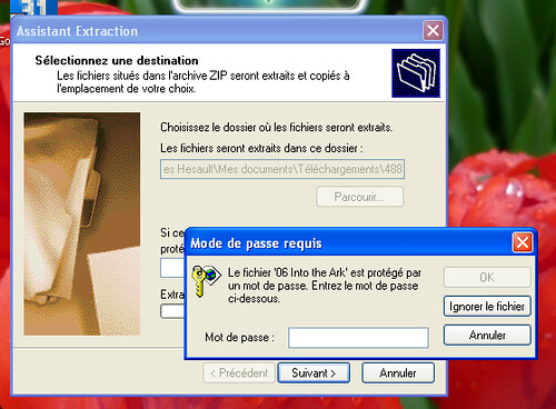 zip de ms-windows = fail !