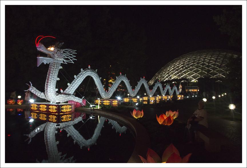 Festival of Lanterns 18