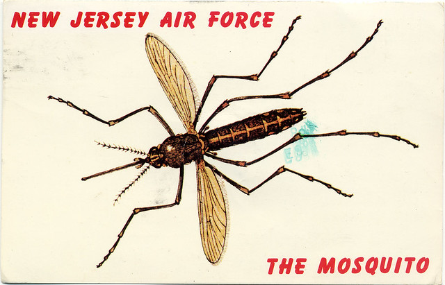 New Jersey Air Force - The Mosquito postcard