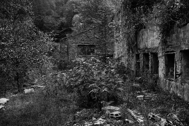 photossafari [minas goizueta]_004