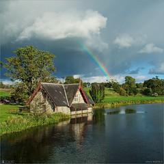 Carton Rainbow
