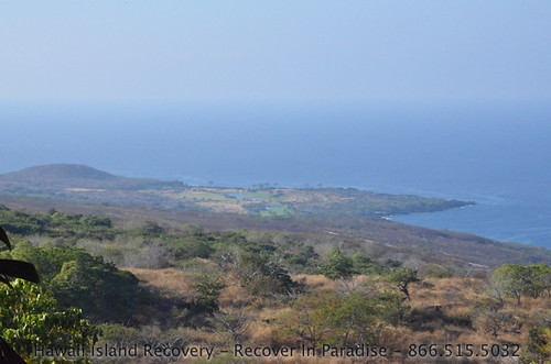 Nature_3 - Hawaii Island Recovery Center