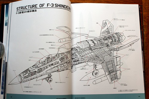 Ace Combat Master File - ASF-X SHINDEN II - 10