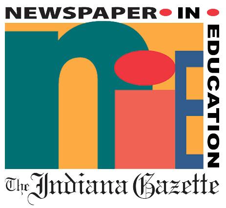 newsNIE-NEWSPAPER-LOGO-TRANSPARENT